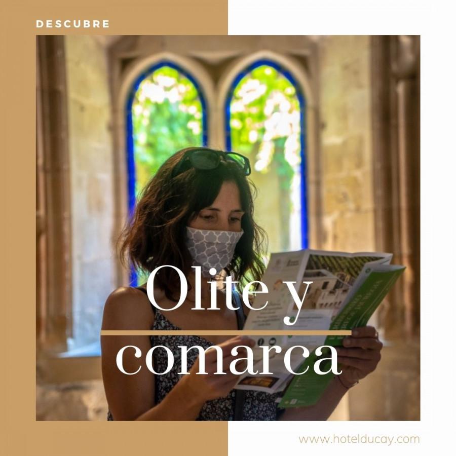 Que ver Olite y comarca