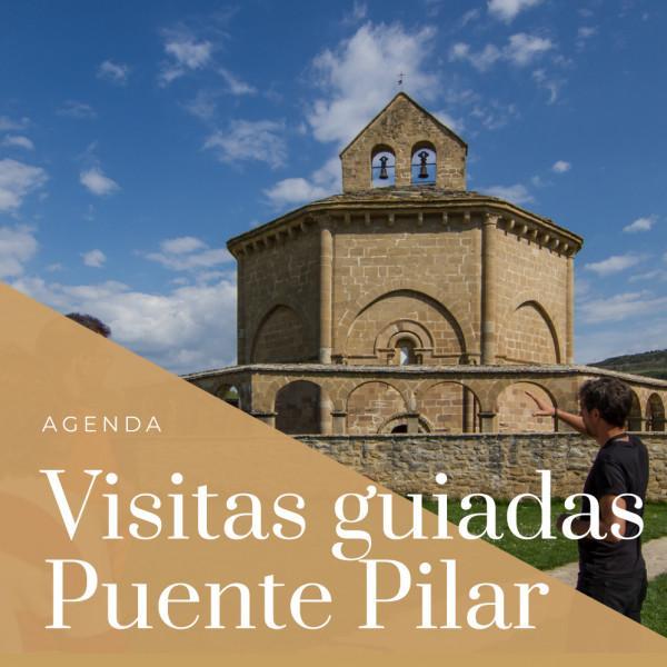 Visitas guiadas Olite y comarca