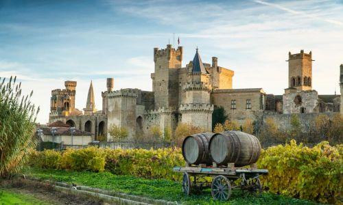 Turismo Navarra Castillo de Olite y enoturismo