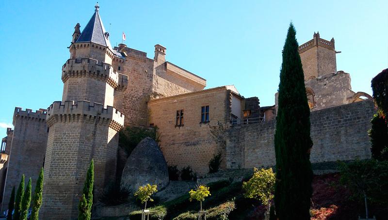 Vista del castillo de Olite